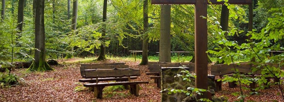 Bestattungswald: Andachtsplatz