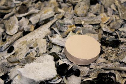 Schamottstein auf menschlicher Asche nach der Einäscherung