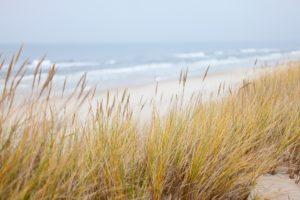 Seebestattung auf der Ostsee: Strand