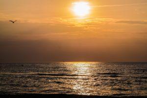 Seebestattung vor Holland: Gedenkfahrten