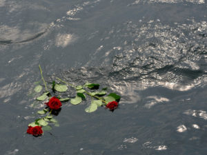 Seebestattung vor Cuxhaven: Rosen treiben auf der Wasseroberfläche als letzter Gruß für den Verstorbenen