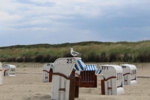 Seebestattung vor Spiekeroog: Strand mit Strandkörben