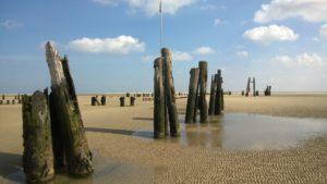 Seebestattung vor Wangerooge: Wattenmeer