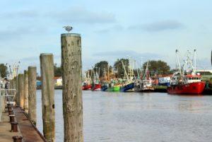 Seebestattung vor Büsum: Im Hafen