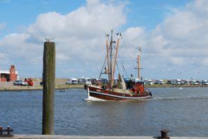 Seebestattung vor Harlesiel: Hafen