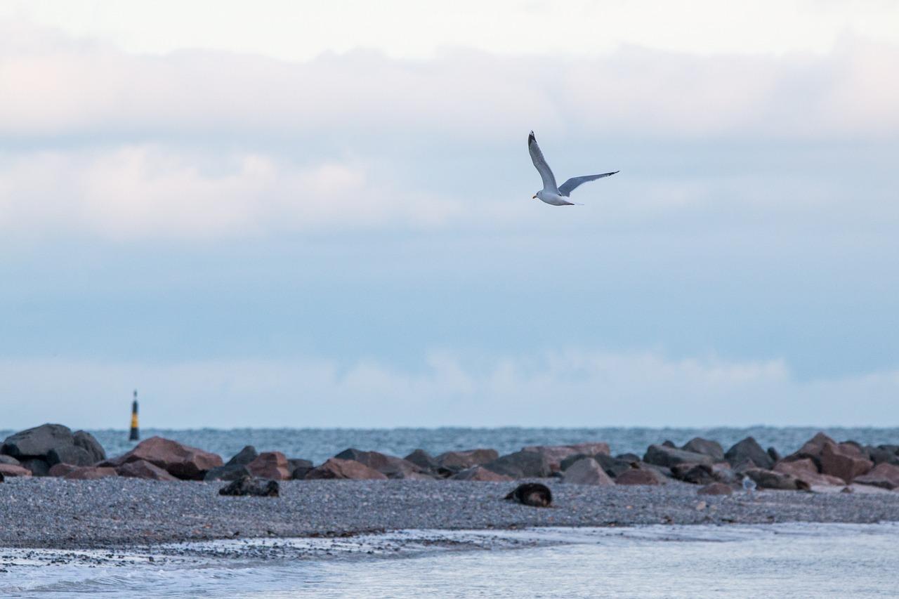 Seebestattung vor Helgoland: Nordsee