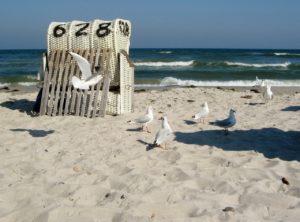 Seebestattung vor Flensburg: Naturstrand Langballigau