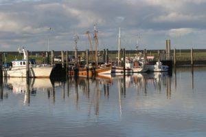 Seebestattung vor Norddeich: Hafen