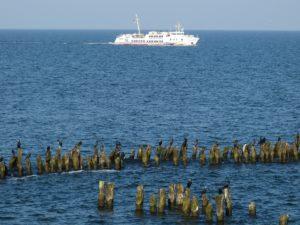 Seebestattung vor Usedom: Adler-Schiffe