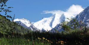 Almwiesenbestattung in den Schweizer Alpen