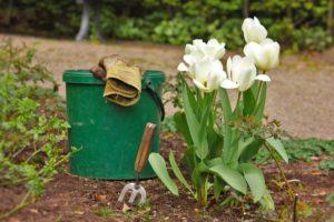 Jahreszeitliche Wechselbepflanzung vom Friedhofsgärtner