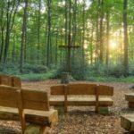 Waldbestattung im RuheForst Bückeburg planen