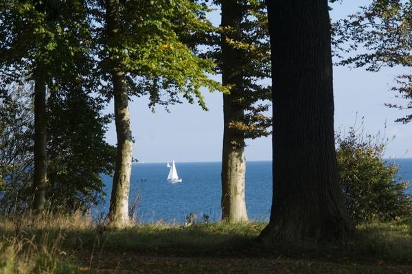 RuheForst Brodau, Blick auf die Ostsee