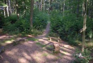 Andachtsstätte im RuheForst Eberswalde