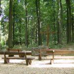 Waldbestattung im RuheForst Laubach
