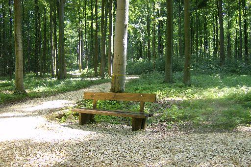 Sitzbank im RuheForst Laubach