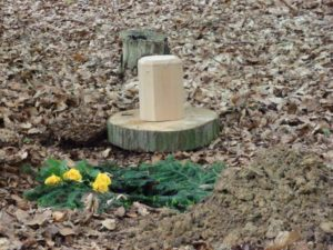RuheForst Marklohe, Grabstelle mit Urne