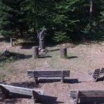 Bestattung im RuheForst Pfälzerwald