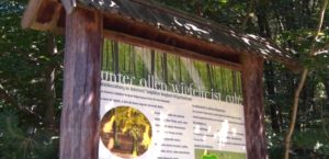 Informationstafel im RuheForst Wilgartswiesen