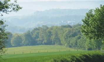 Grüne Umgebung des RuheForst Bad Arolsen