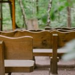 Waldbestattung im FriedWald Kirchheimbolanden
