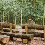 Waldbestattung im FriedWald Grevesmühlen