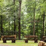 Waldbestattung im FriedWald Herborn