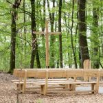 Waldbestattung im FriedWald Hohenlohe