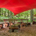 Waldbestattung im FriedWald Sangerhausen