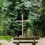 Waldbestattung im FriedWald Waldhessen