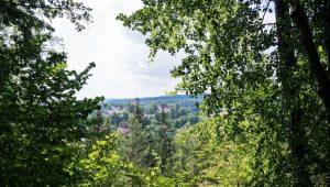 FriedWald Altmühltal bei Pappenheim, Blick auf Pappenheim