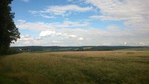Ausblick vom FriedWald Waldenburg