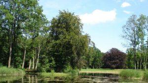 FriedWald Rügen, Schlosspark