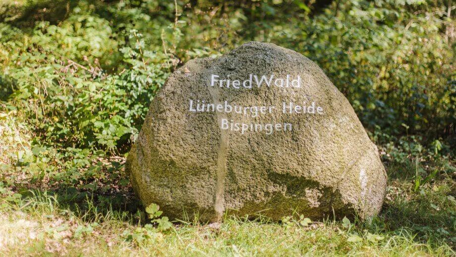 Quelle: FriedWald Lüneburger Heide