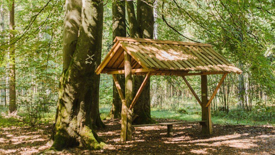 Sitzbank| Quelle: FriedWald Lüneburger Heide