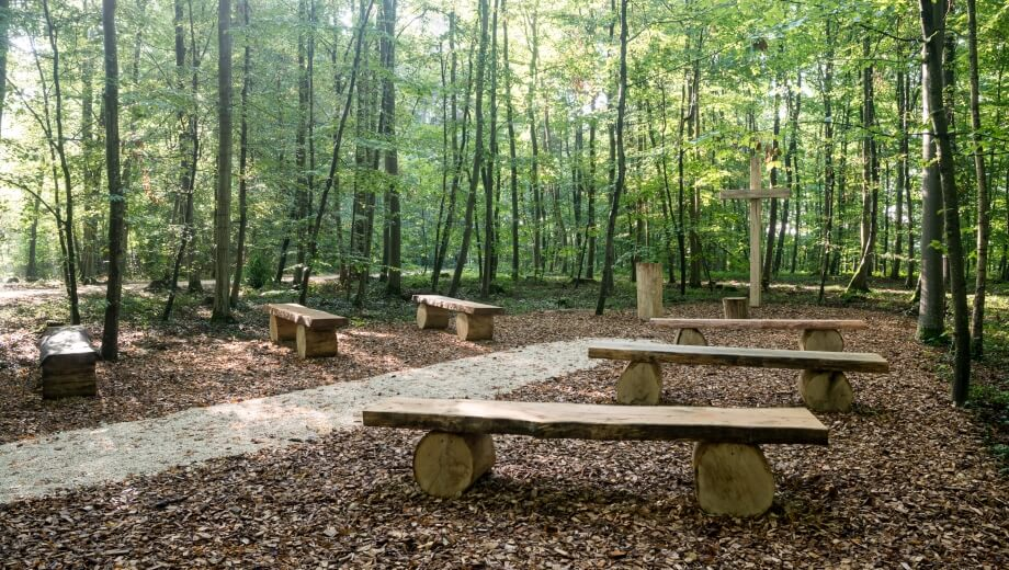Waldbestattung im FriedWald Duttenstein