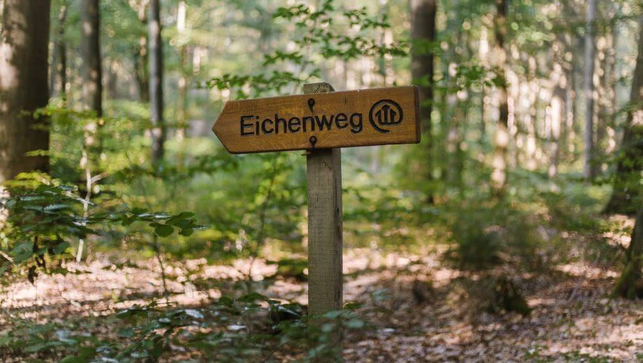 Wegweiser | Quelle: FriedWald Bremervörde