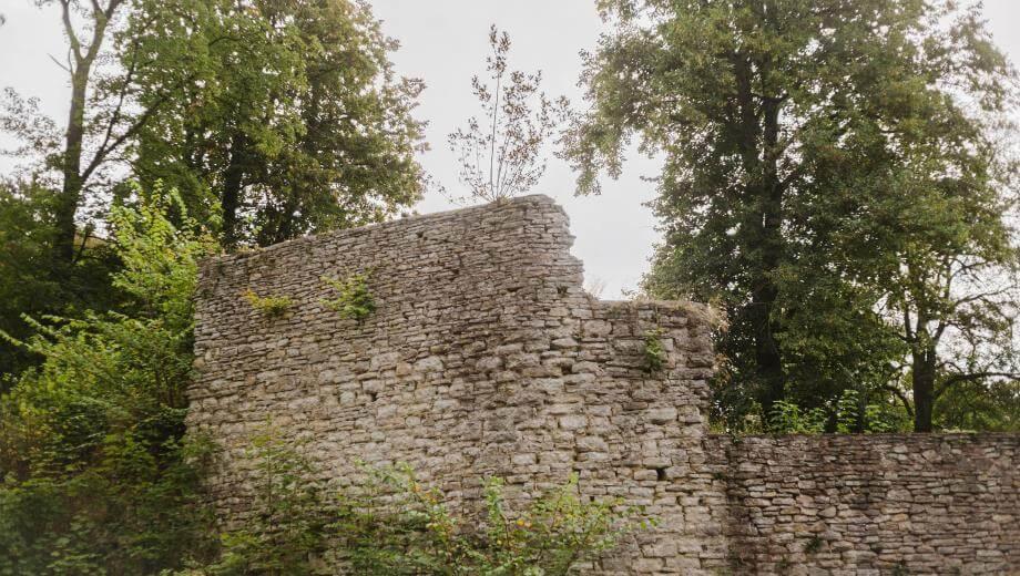 Burg Plesse | Quelle: FriedWald Burg Plesse