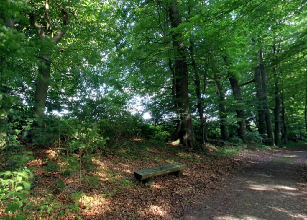 Waldweg | Quelle: Ruheforst Bothkamp an der Eiderquelle